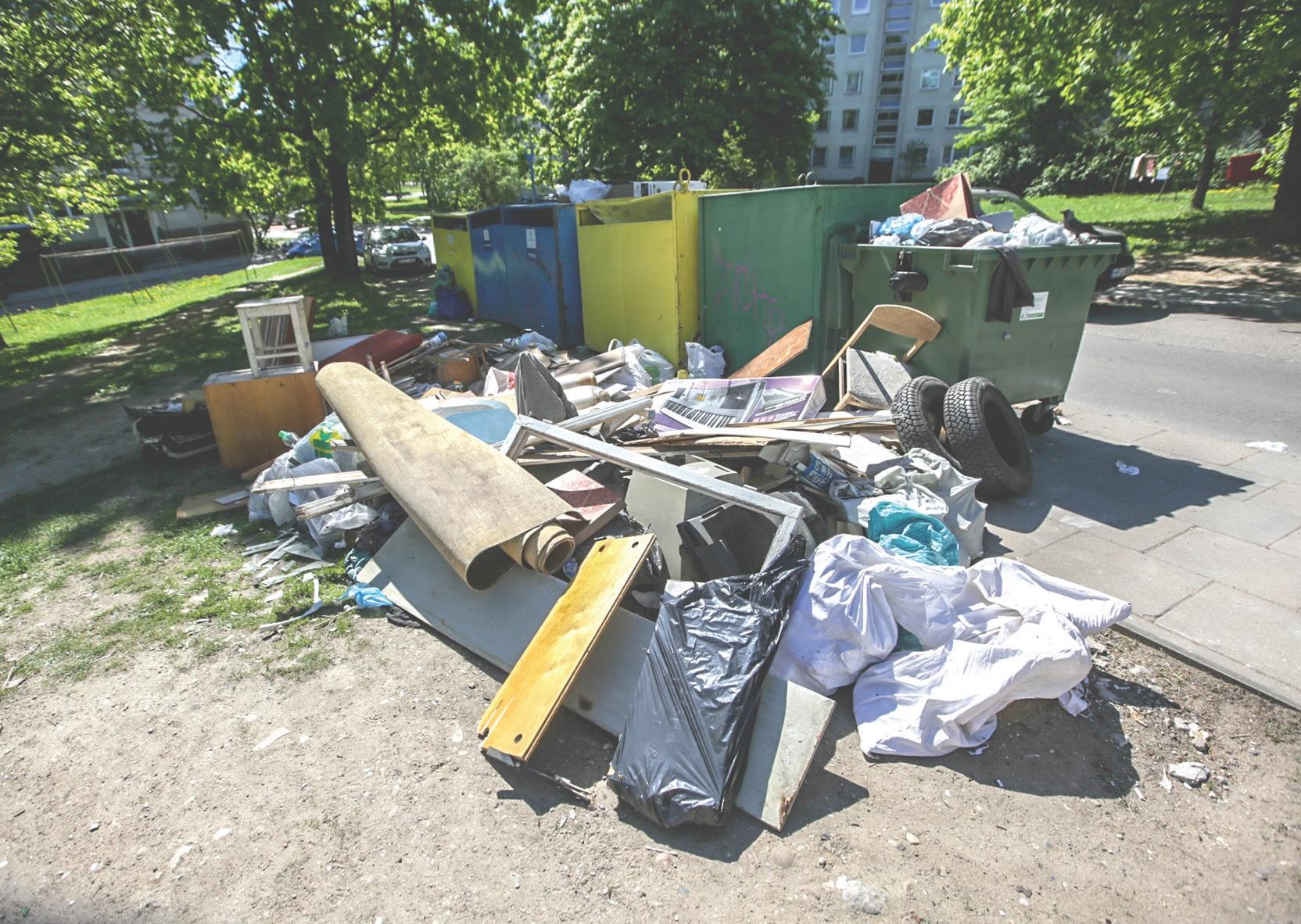 Atliekų tvarkytojai pastebi, kad dar vis tiek yra labai daug neatsakingų žmonių, kurie verčia šiukšles bet kur. BNS/ Vidmanto Balkūno nuotr