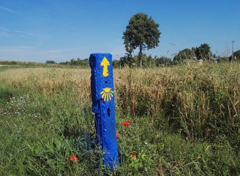"""""""Camino Lituano"""" kelią rodo geltonos rodyklės bei šv. Jokūbo kriauklės mėlyname fone. Organizatorių nuotr."""