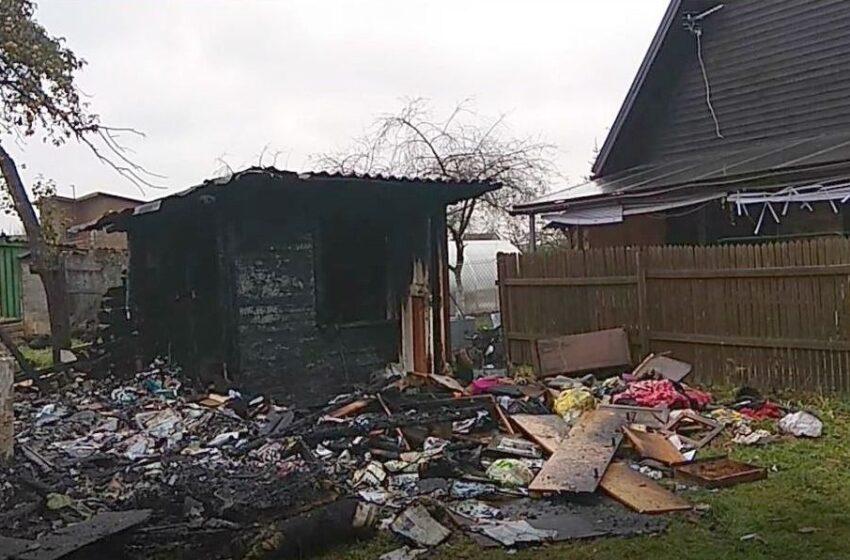 Soduose liepsnojo namelis: sudegė du šunys