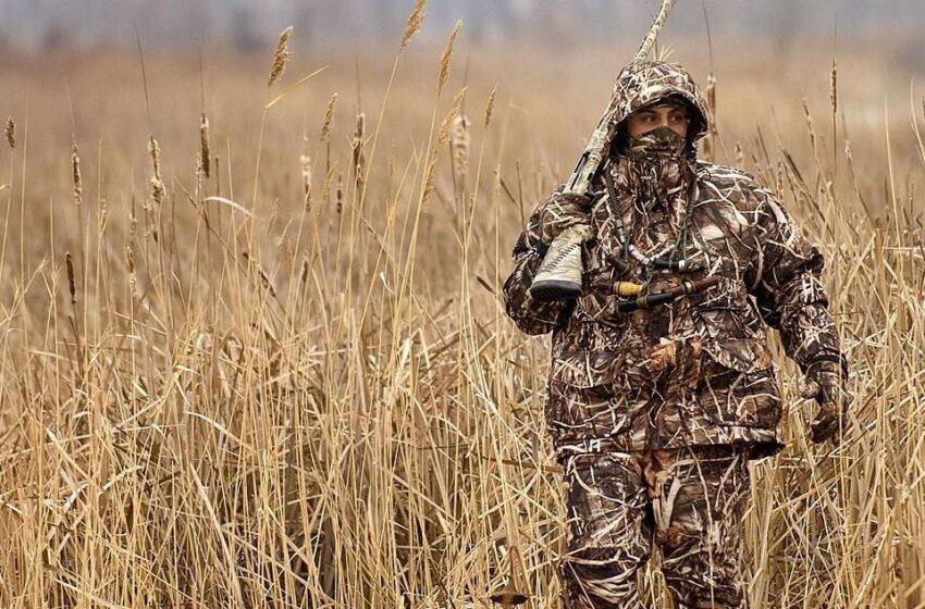 Spalio 15-ąją – medžioklės su varovais sezono pradžia