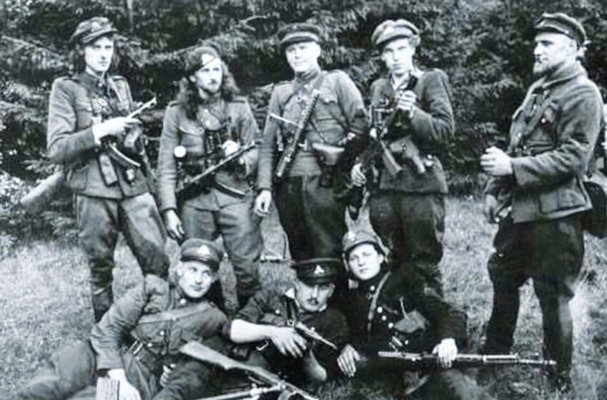 """""""Partizanų karo prieštaravimai kilo dėl politinių interesų konflikto"""""""