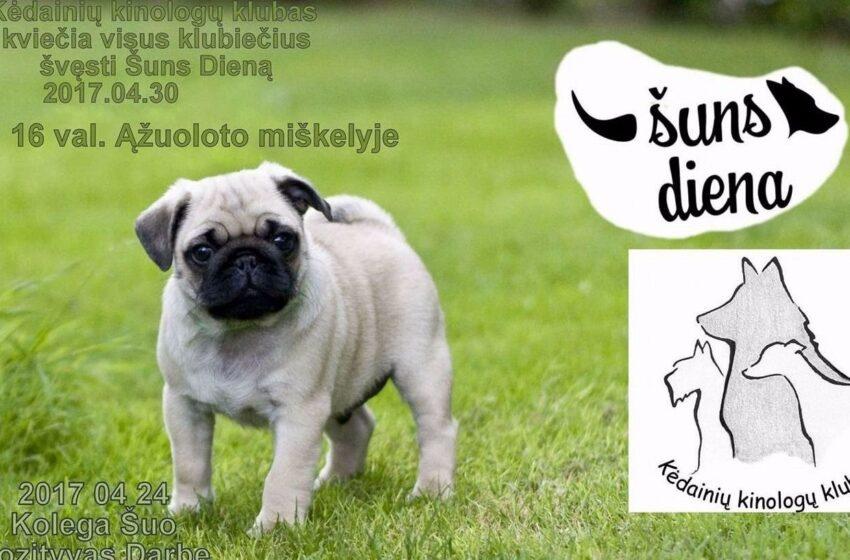 Keturkojų mylėtojai, minėkime šuns dieną!