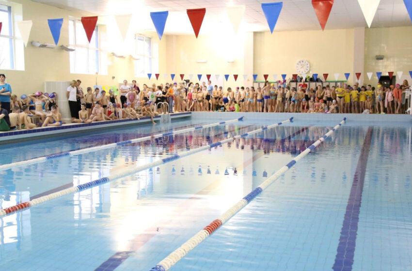 Plaukimo pamokos pradinukams – ir šiemet