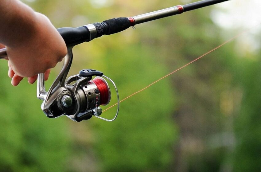 Nuo šiandien draudžiama lašišų ir šlakių žvejyba