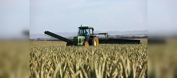 Leidimai ūkininkams įsigyti gazolių Mano VMI – nuo liepos 7 d.