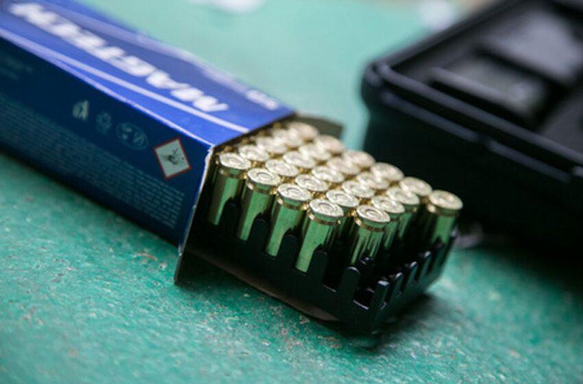 Tvarkydamas sklypą rado 70 mažo kalibro šovinių