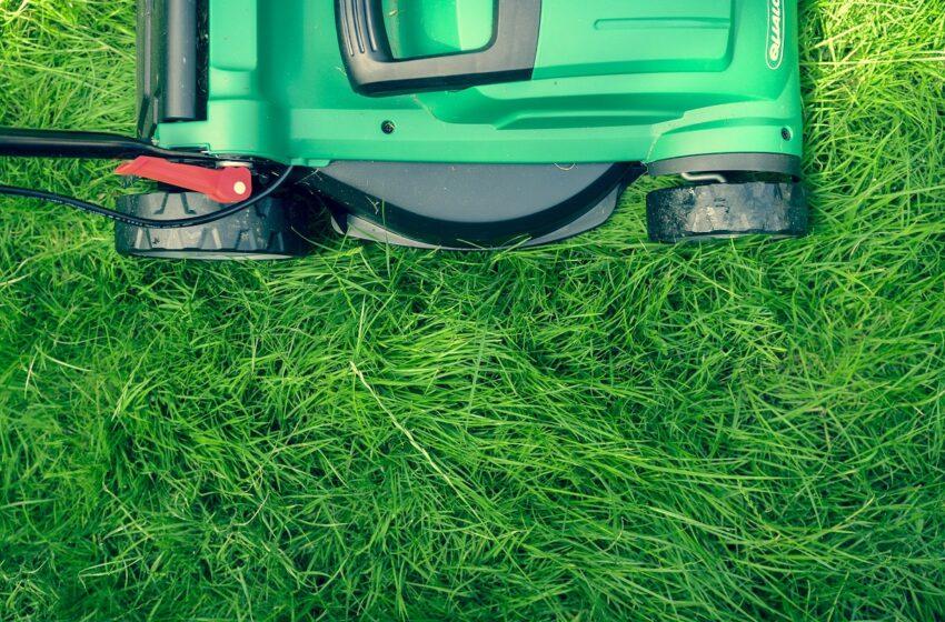Tinkamai pasirinkta vejapjovė – lengvesni vasaros darbai sode