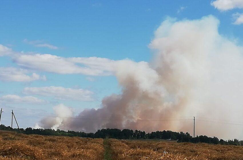 Kėdainių rajone išdegė 2 hektarai pasėlių