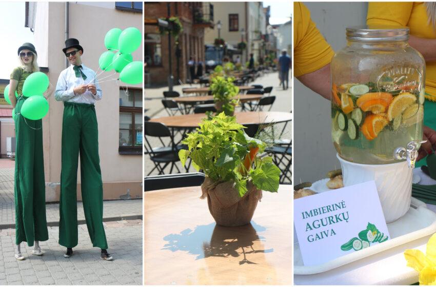 Į miestą atskubėjo Agurkų diena (FOTO)