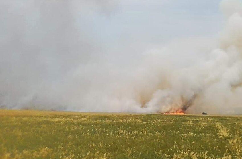 Degančius javų laukus gesina ne tik ugniagesiai, bet ir ūkininkai bei gyventojai