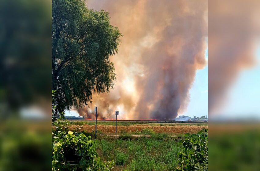 Košmariškas pirmadienis ugniagesiams – laukuose kilo 11 gaisrų