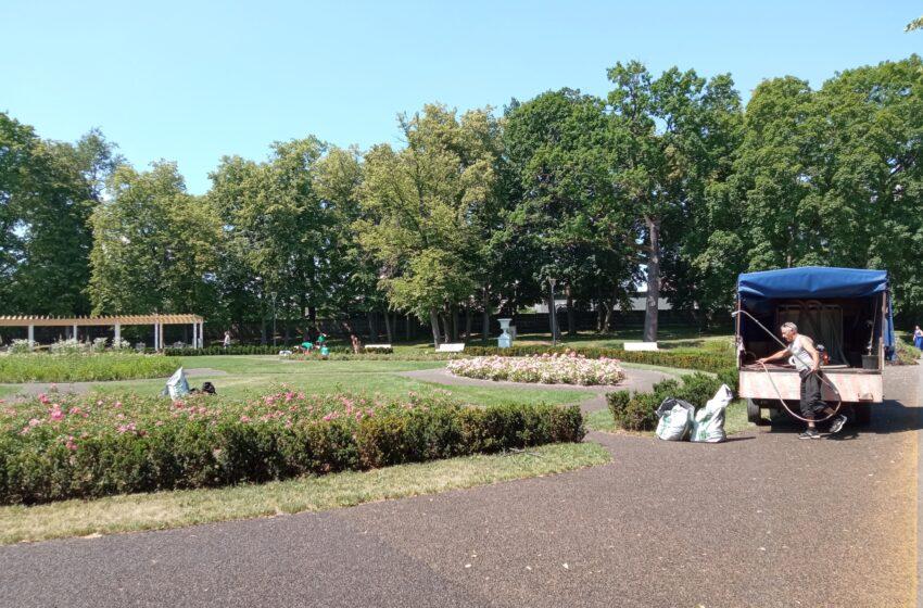 Tvarko miesto parko gėlynus