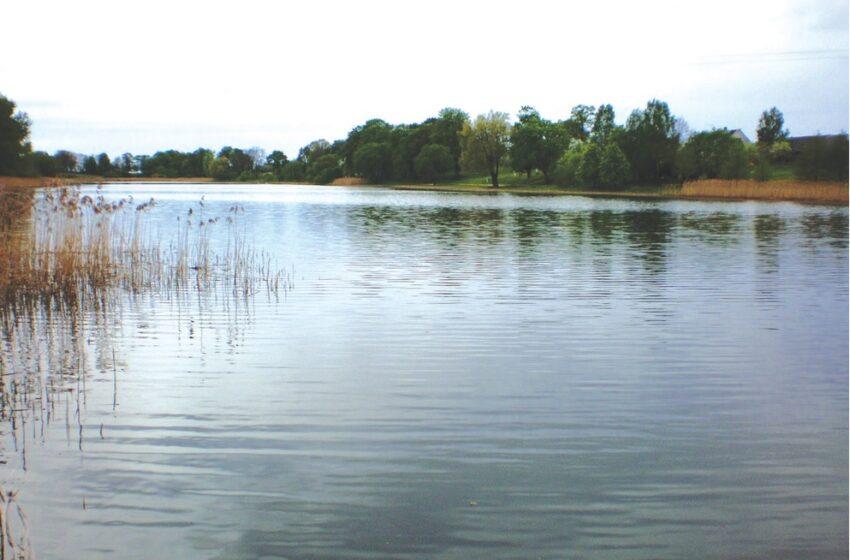 Ieškant Dainio ežero
