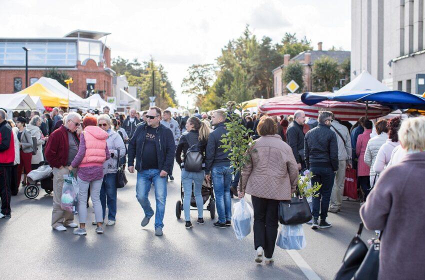Šį šeštadienį Kėdainiuose – išskirtinė Lietuvos gamintojų ir sodinukų mugė