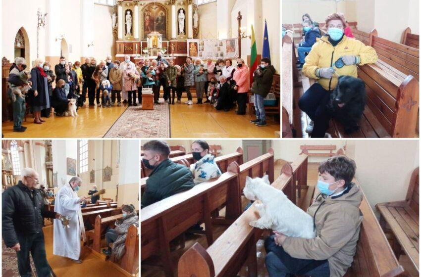 Bažnyčioje meldėsi kartu su savo augintiniais (FOTOGALERIJA)