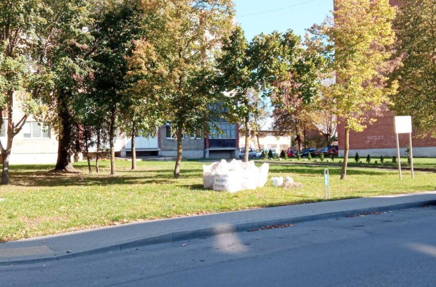 Daugiabučių gyventojus kviečia grėbti lapus